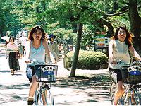 天橋立を自転車で楽しむ!